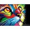 WD-200 Kočka v barvách duhy