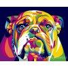 ART-MINI16130016 Malování podle čísel - Buldoček (17x13cm)