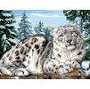 ARP988.0132.218 Sněžný leopard