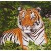 S-46.380 Odpočívající tygr