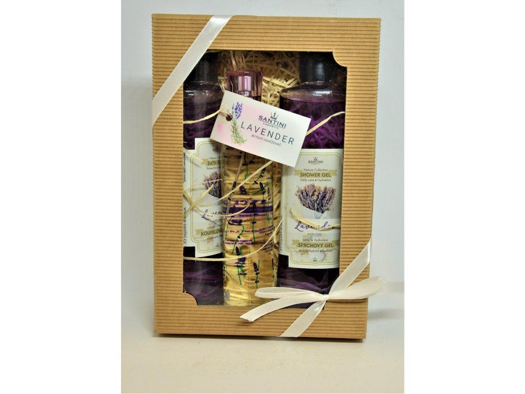Dárková kazeta SANTINI Lavender