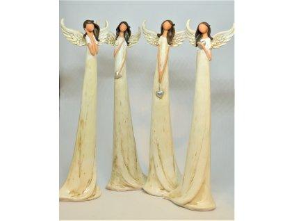 Vysoký andělíček