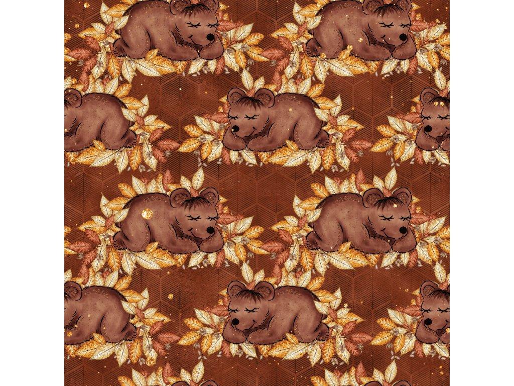 Zimní Softshell - Medvídci
