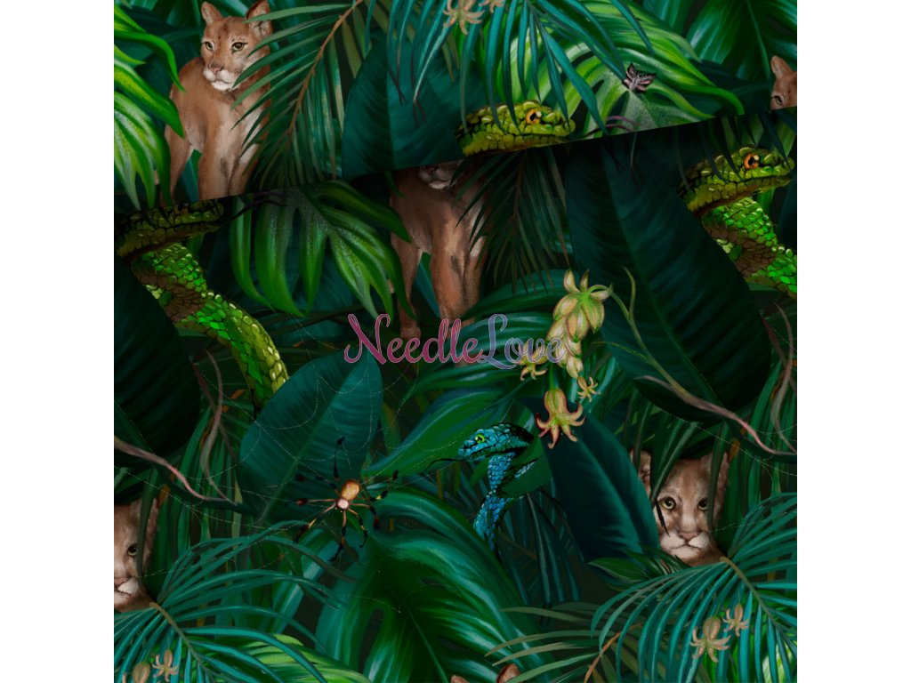 wild jungle puma and snake