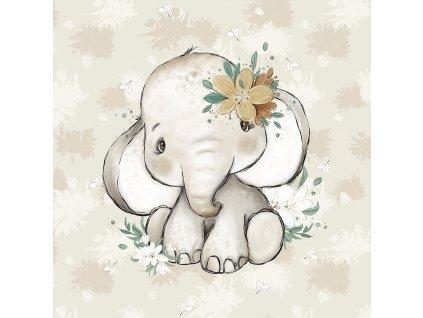ft panel african baby elephant