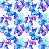 Jarní Softshell - Motýlci