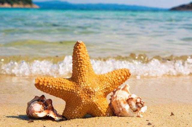 Hurá k moři - začínají prázdniny!