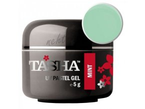 Uv gel barevný Tasha Pastel Mint 5g - Black Line
