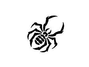 Šablona na tetování Pavouk 3.