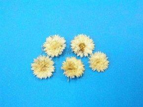 Zdobení nehtů - Sušené květy KW 07