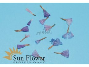 Zdobení nehtů - Sušené květy KW 36