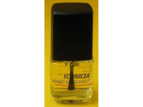 Echinacea damaged nail treatment - na poškozené nehty