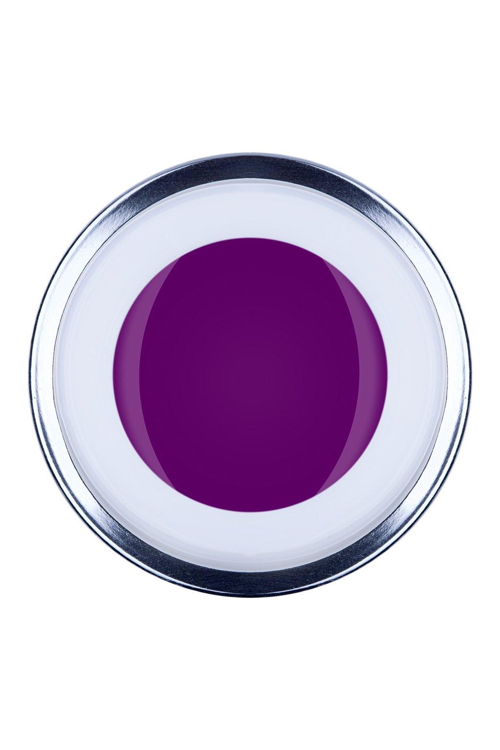 Paint Violet