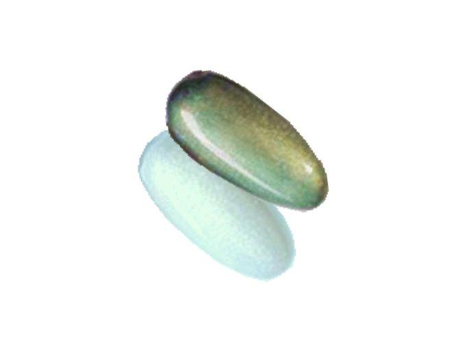 Chromatic zelenkavý