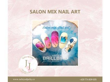 salon mix nail art