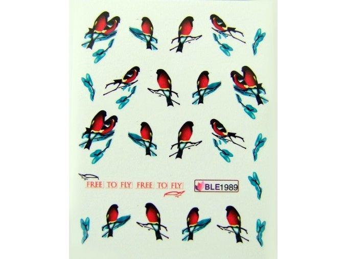 Vodolepky - ptáček