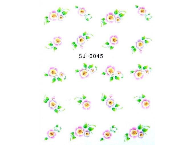 Vodolepky, kytky 0045