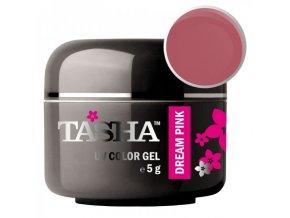 Barevný gel Dream Pink 5g Black Line