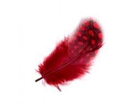 Červené peříčko 3ks
