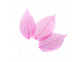 Růžové sušené listy 3ks