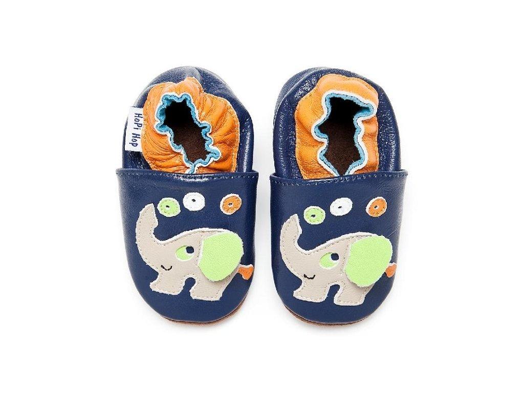 slon modry (1)