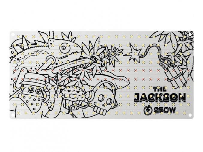 jackson 250w