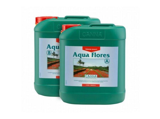 canna aqua flores 5l
