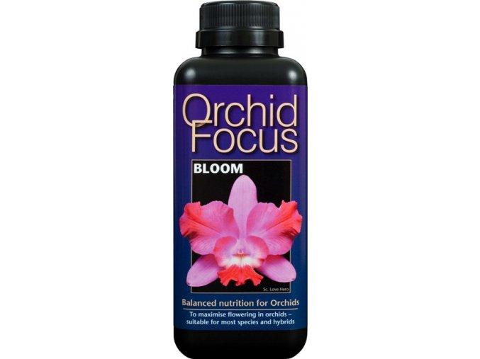 Orchid Focus Bloom 300ml