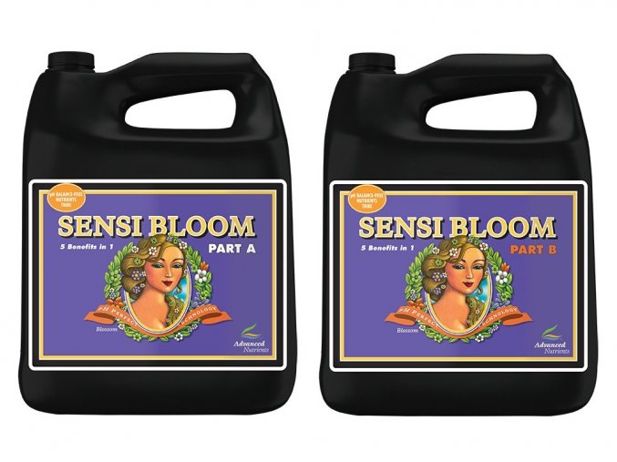 AN sensi bloom a+b 5l