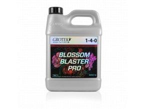 Blossom Blaster Pro