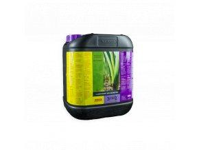 b cuzz 1 component soil nutrition 5l
