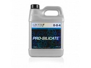 1L Pro Silicate
