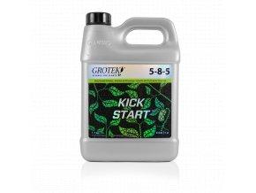 1l kick start