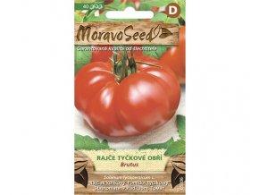 rajče brutus