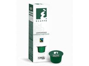 Kapsle vyvážené espresso Caffitaly Ecaffé  Armonioso  10kusů