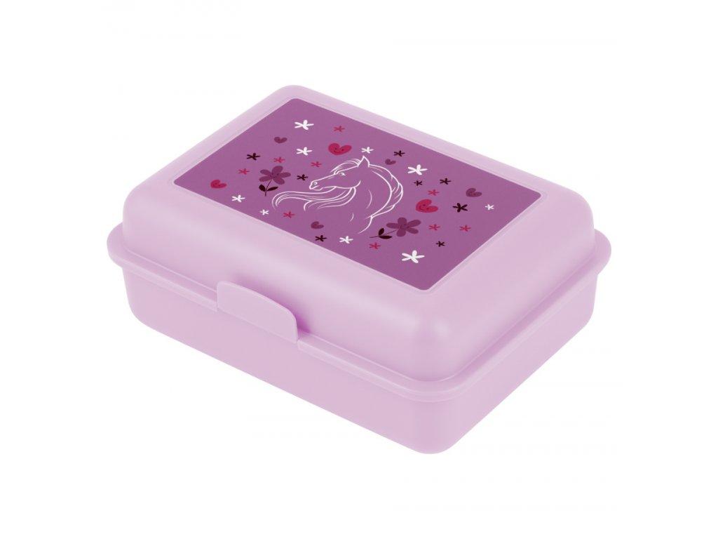 173860 5 baagl box na svacinu kone fialova