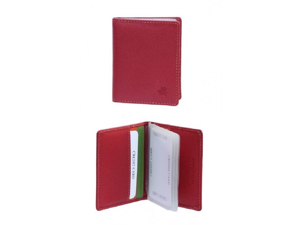 164650 5 pouzdro na vizitky carraro multicolour cervena