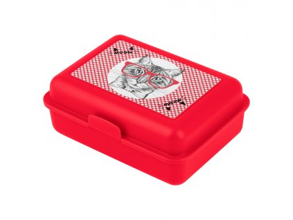 62112 5 baagl box na svacinu kocka