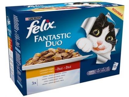 Felix Fantastic kapsička DUO Multipack masový výběr 12 x 100 g