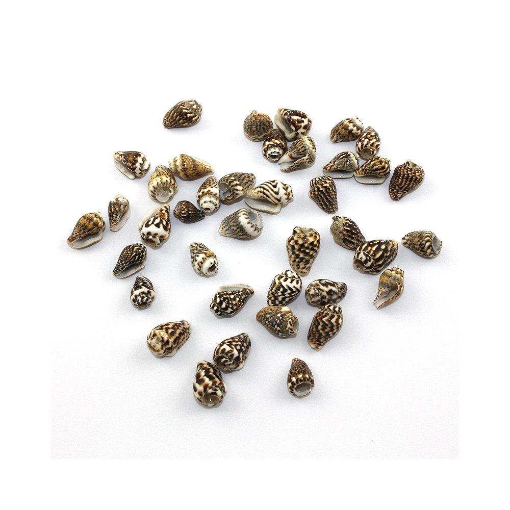 Mušle - pískově hnědá - cca 15 x 7 x 7 mm - 1 ks