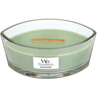 WW.loď/White Willow Moss