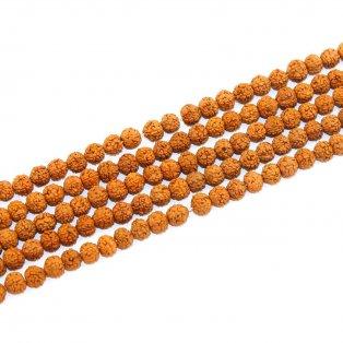 Přírodní rudraksha korálek - ∅ 8 mm - 1 ks