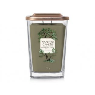 YANKEE CANDLE - VETIVER & BLACK CYPRESS - elevation velká - 1 ks