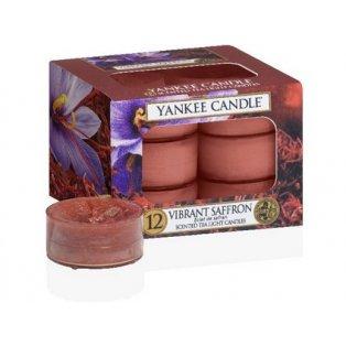 YANKEE CANDLE - VIBRANT SAFFRON - čajové svíčky - 12 ks