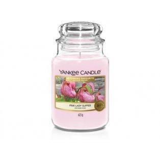 YC.sklo3/Pink Lady Slipper