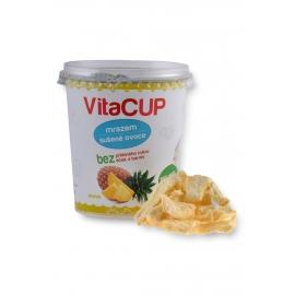 VITA CUP