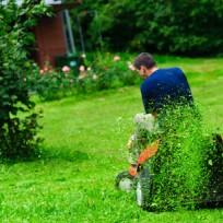 Mulčování trávy
