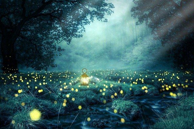 Noční bojovky pro děti a vaši zahradu!