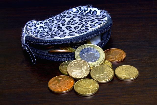 purse-758770_640