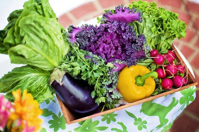 zelenina-sklenik